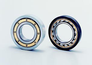 NTN traction motors